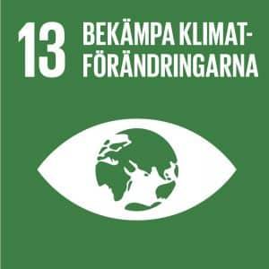 En text där det står Bekämpa klimatförändringarna och är nummer 13 av 17 st av FN:s globala mål.